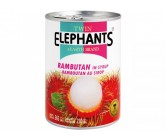 Twin Elephant Rambutang 565g