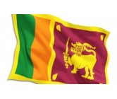 Sri Lanka National Flag Medium