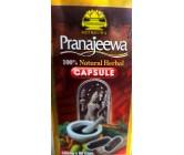 Pranajeewa Medicine Capsule 500mg x 80